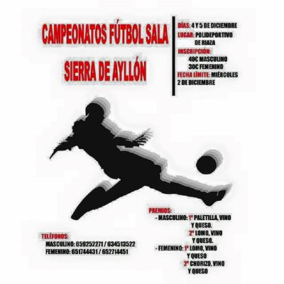 Campeonato de Futbol Sala<br> Sierra de Ayll�n